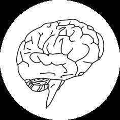 Change Management Piktogramm Gehirn